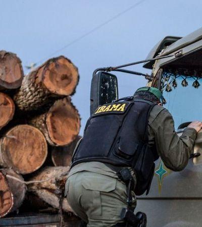 Ruralistas querem liberar caça no Brasil. Inclusive em áreas de conservação