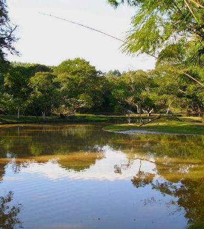 Ambiente bucólico a 50 km da capital é excelente opção para desestressar