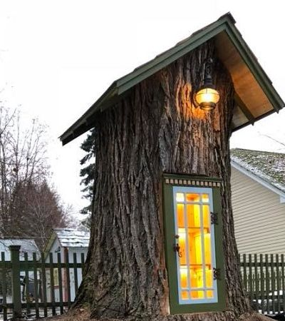 A incrível árvore que dá livros ao invés de frutos