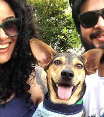 Acha inviável ter cachorro em apartamento pequeno? Essa história prova o contrário | Adotar é Hype #1