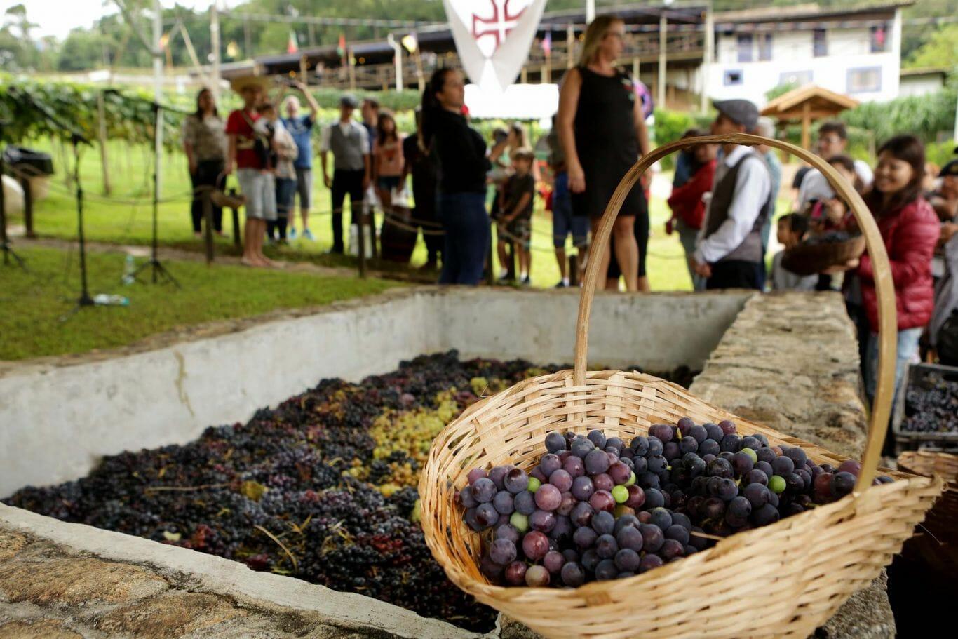 festa da uva 7