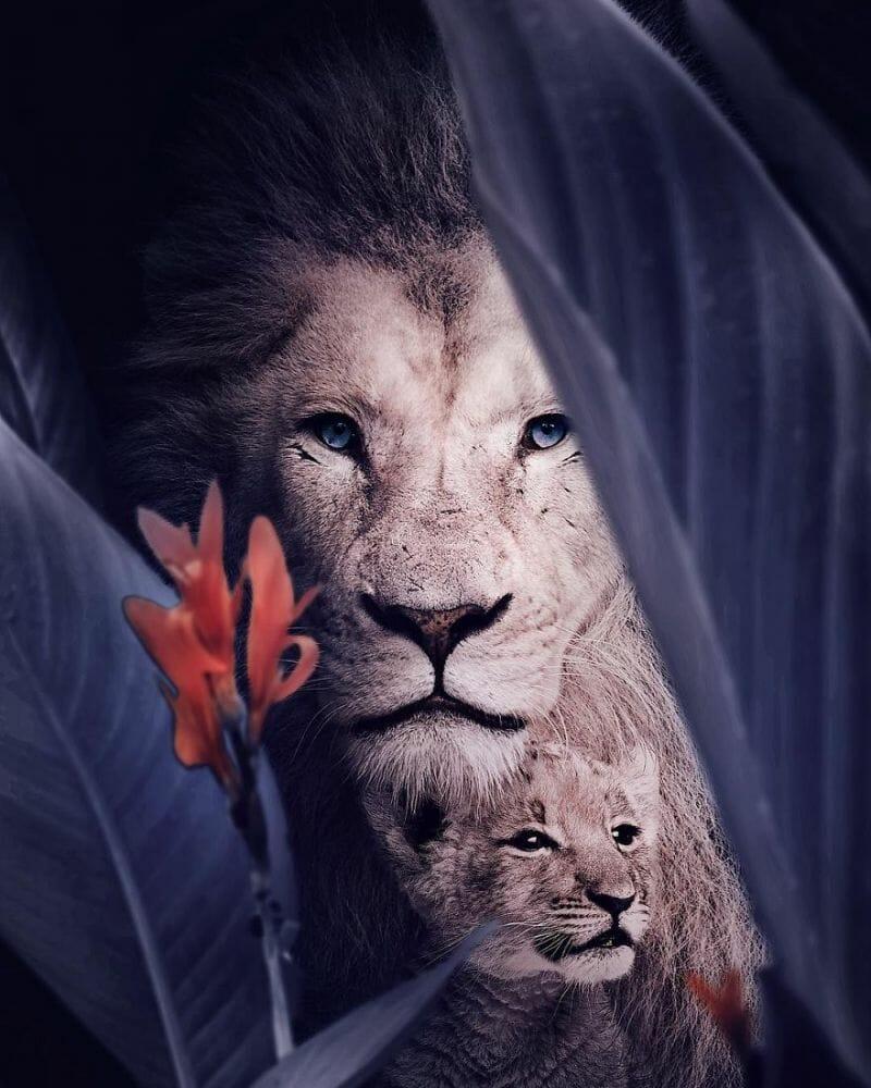 fotos animais extinção 5
