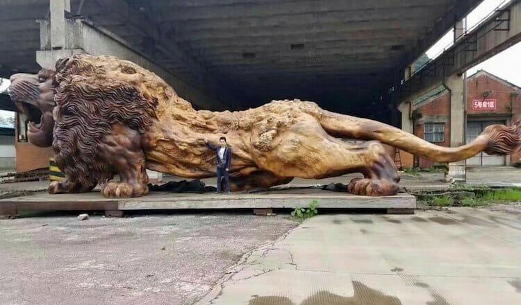 leão de madeira 7