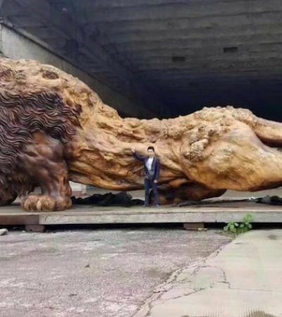 20 pessoas e 3 anos de trabalho transformaram um tronco neste leão cabuloso