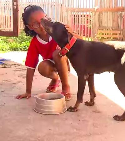 Menina de 7 anos recolhe latas para comprar ração para cães. E ganha surpresa
