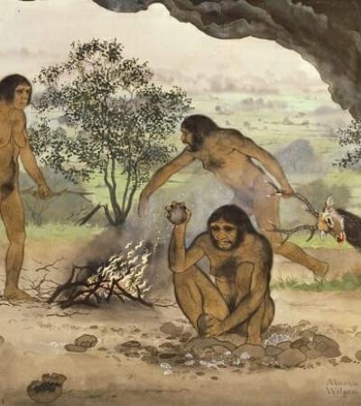 Nova teoria da evolução diz que nossos ancestrais se domesticaram matando os mais violentos
