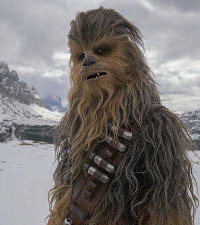 As lições de amizade que aprendemos com Chewbacca e Han Solo