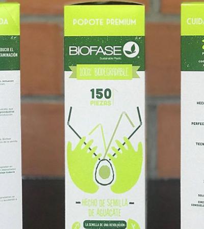 Empresa mexicana cria descartáveis de semente de abacate que se desintegram em 240 dias