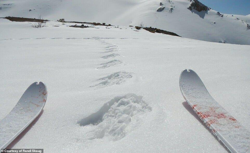 esquiadora desafio Irã 13