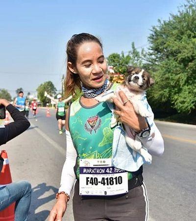 Corredora encontra filhote perdido e o carrega por 30 Km de maratona