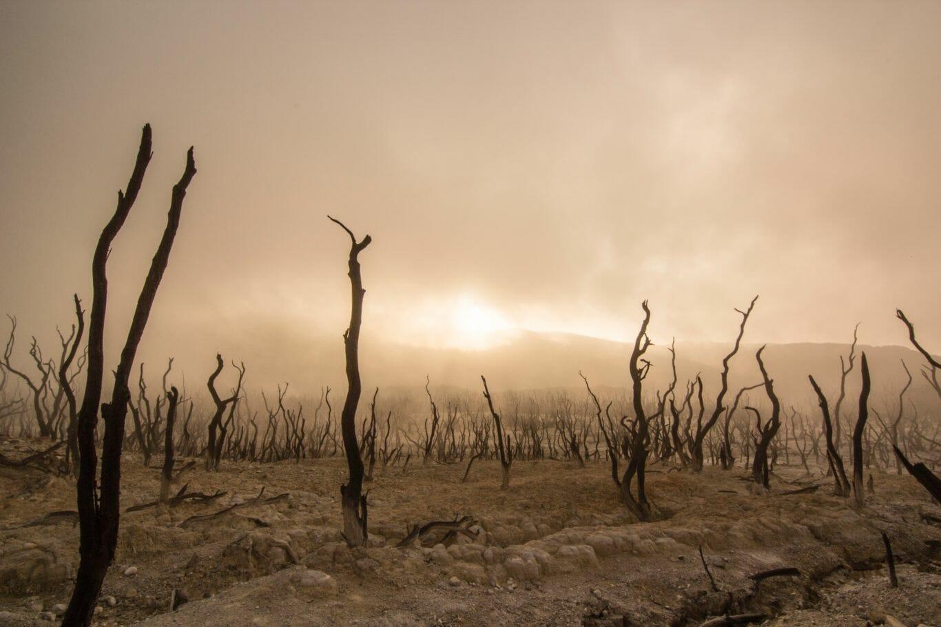 mudanças climáticas preocupação 2