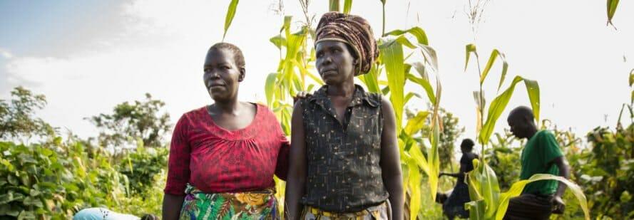 permacultura refugiados uganda 10