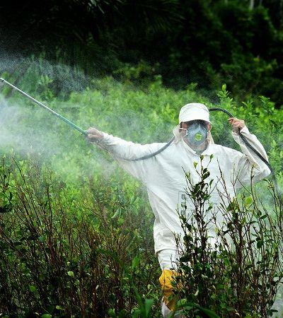 Anvisa abre consulta pública sobre regulação do agrotóxico glifosato