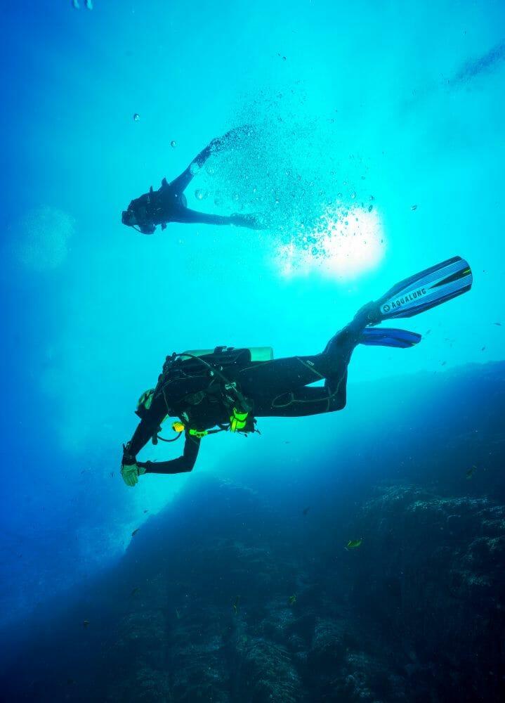 plastico oceanos crustáceos 1