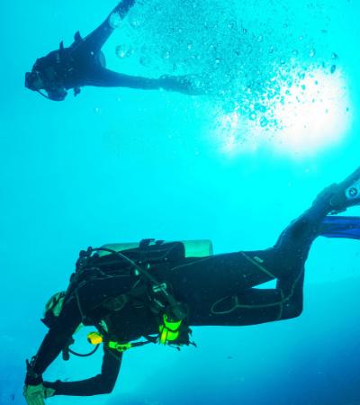 Encontraram plástico em animais que vivem a mais de 10 mil metros abaixo da superfície do mar