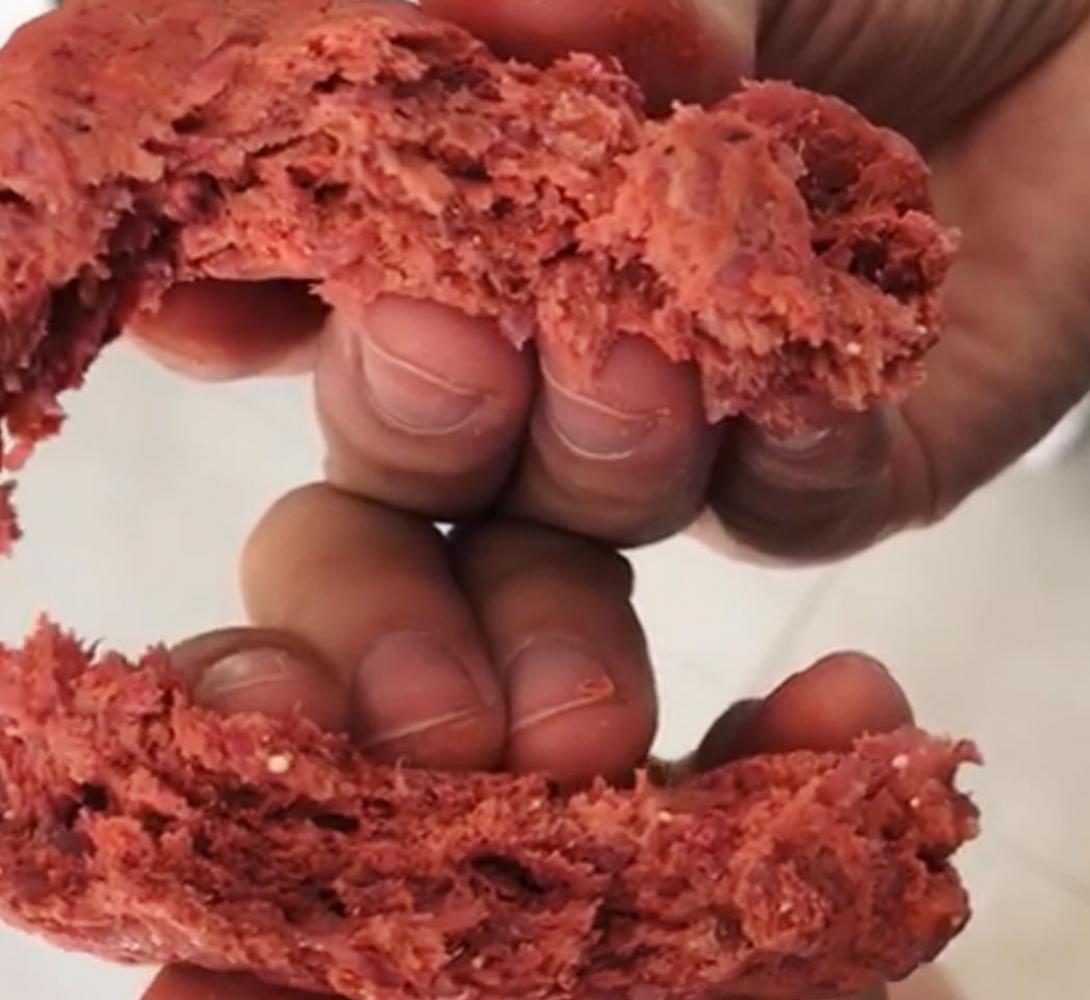 réplica carne animal 1