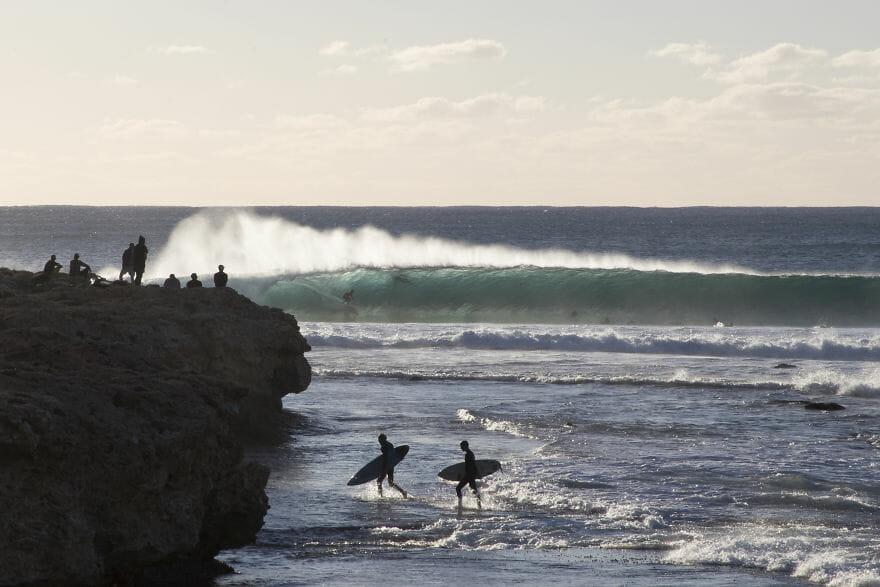 tubarões surf austrália 11