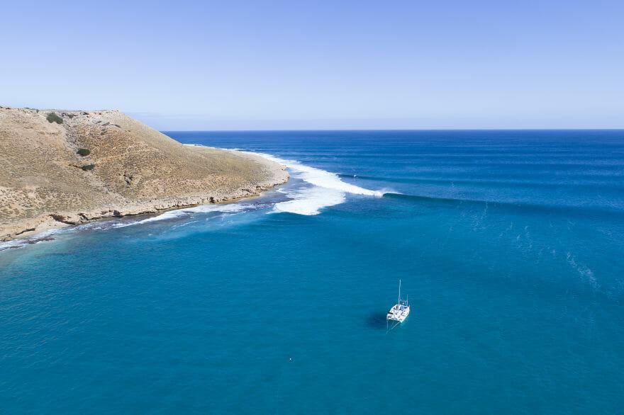 tubarões surf austrália 12