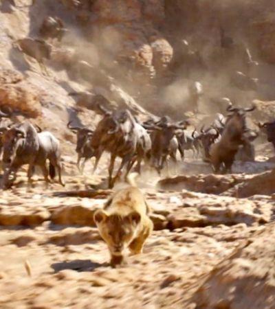 Novo trailer de 'O Rei Leão' emociona com cenas clássicas; assista