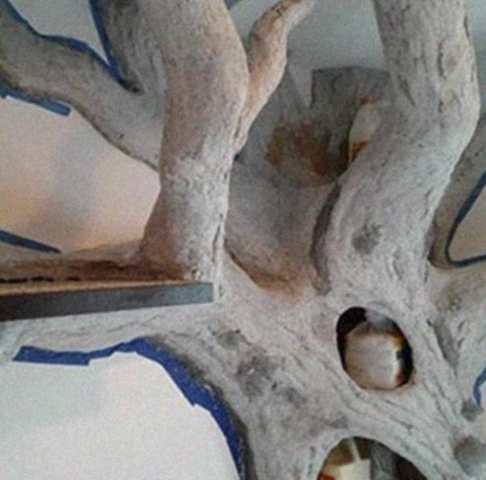 árvore falsa gato 6
