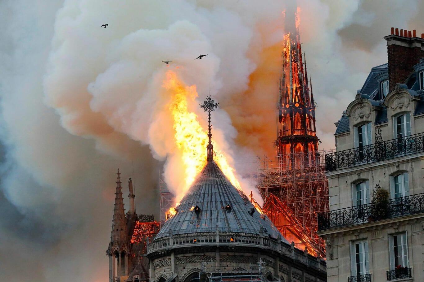abelhas incêndio Notre Dame 1