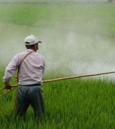 27 agrotóxicos foram achados na água de 1 em cada 4 municípios brasileiros, segundo Agência Pública