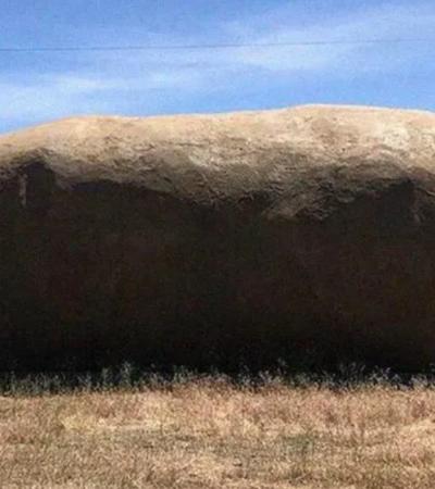 Você já pode morar em uma batata gigante, uma das melhores pérolas do Airbnb