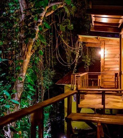 Hostel em Ilhabela tem opção de casa na árvore como hospedagem
