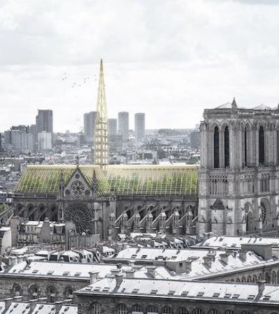 Designers reimaginam o telhado de Notre Dame como uma estufa sustentável