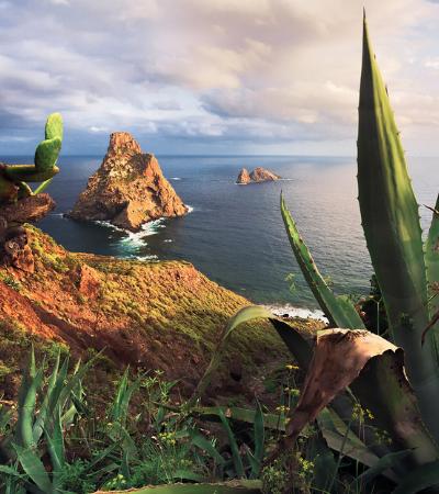 Descubra toda a beleza das Ilhas Canárias