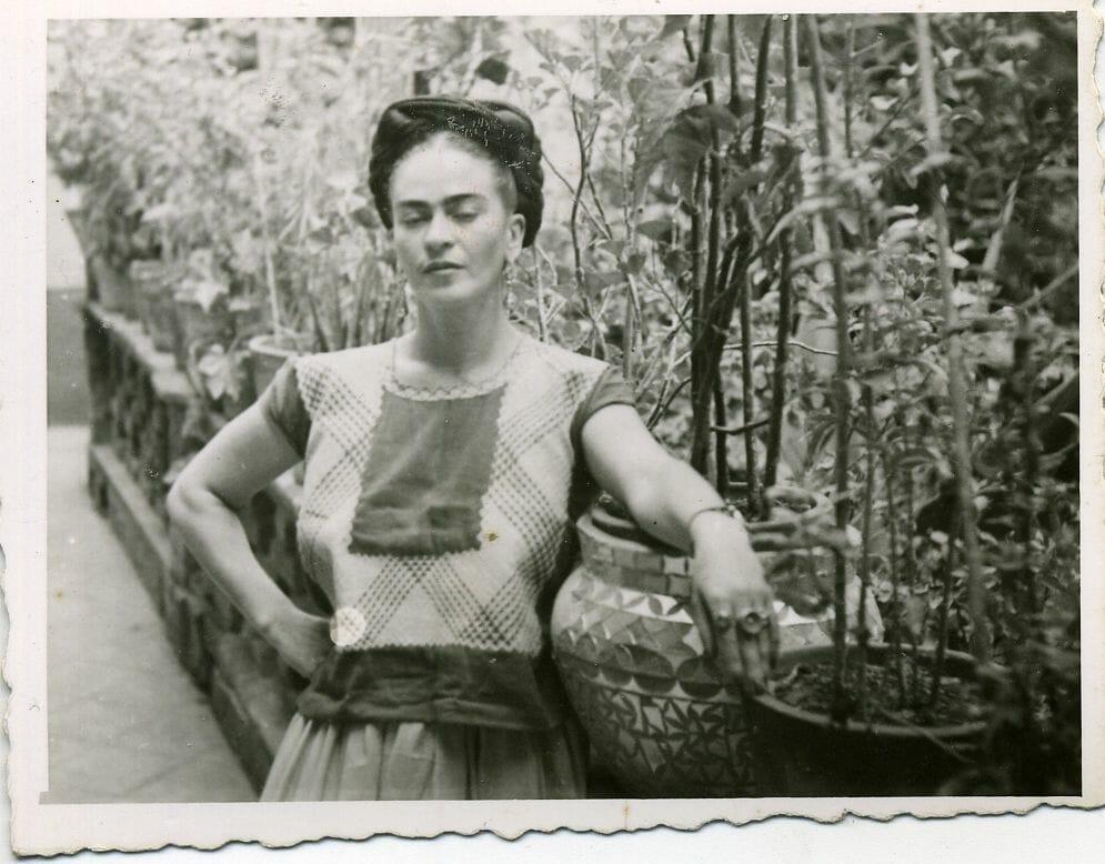 jardim de frida kahlo 1