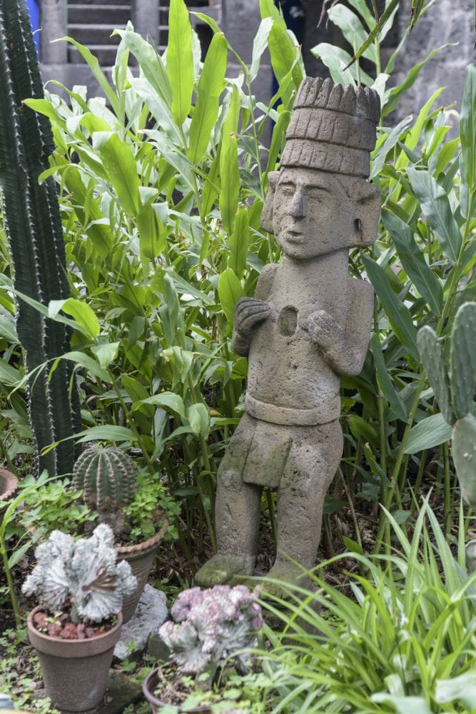 jardim de frida kahlo 2