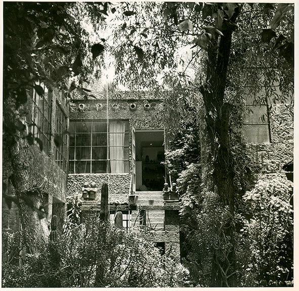 jardim de frida kahlo 4