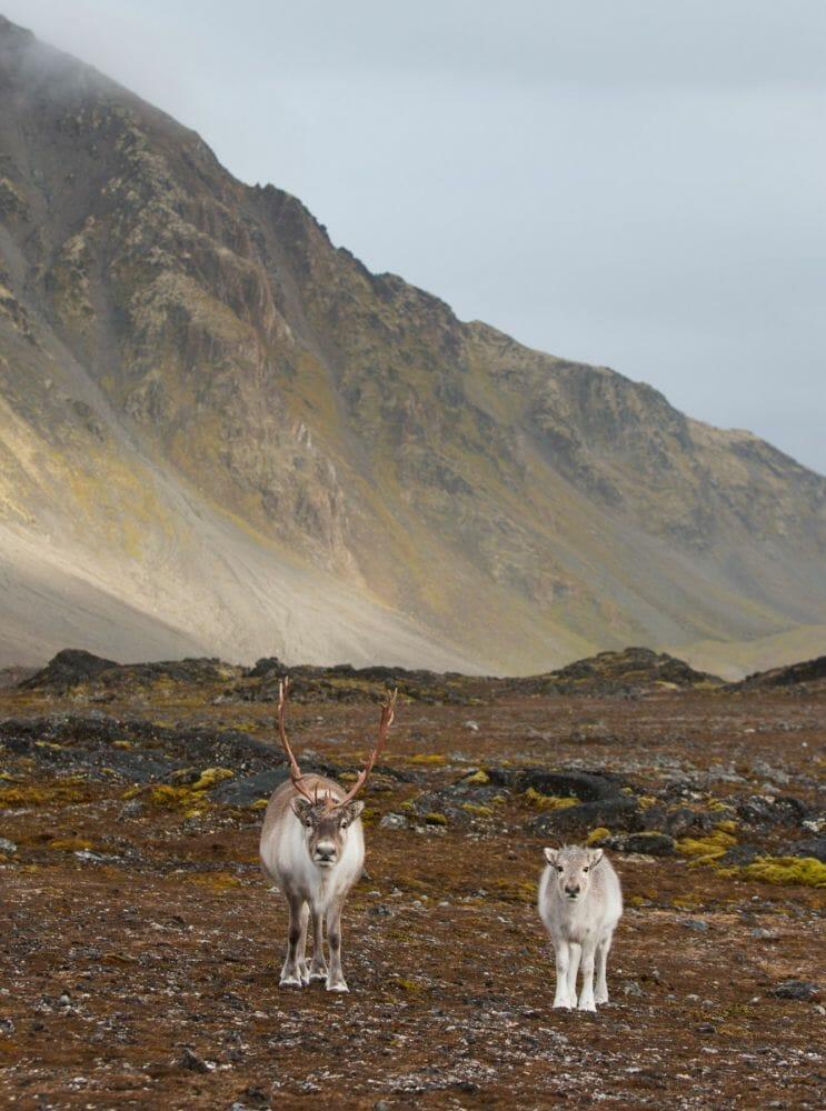 paisagens da noruega 2