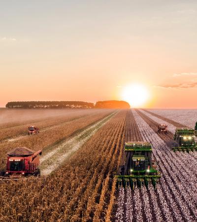 Projeto de lei quer suspender as recentes aprovações de agrotóxicos