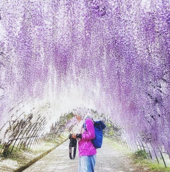 túnel flores japão 2