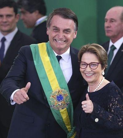Mais de 1 veneno por dia: Governo Bolsonaro libera 166 agrotóxicos em 4 meses