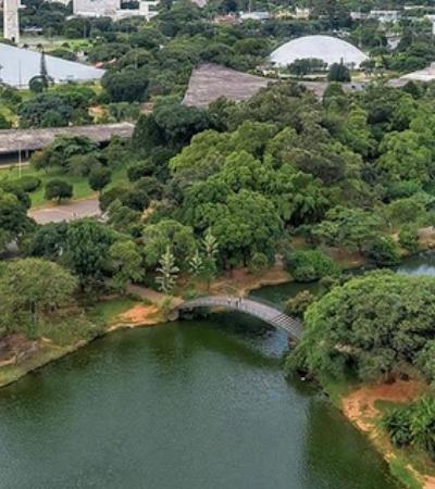Parque do Ibirapuera recebe maior festival de gastronomia de rua do mundo