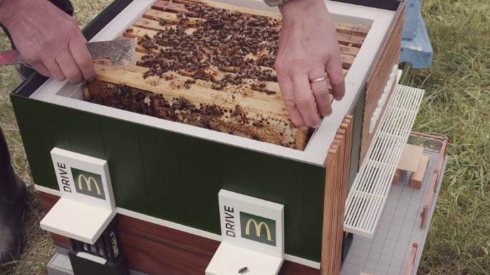 mcdonald's abelhas 7