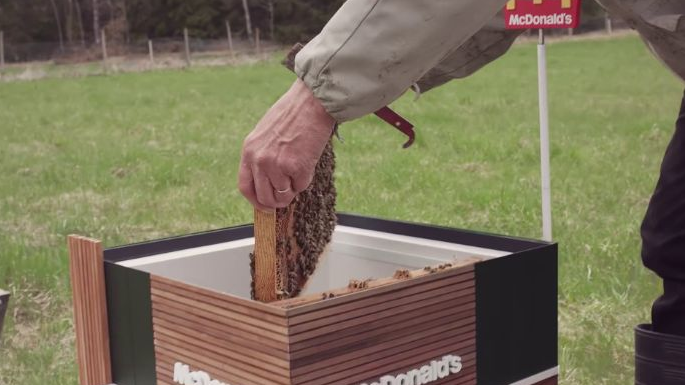 mcdonald's abelhas 8