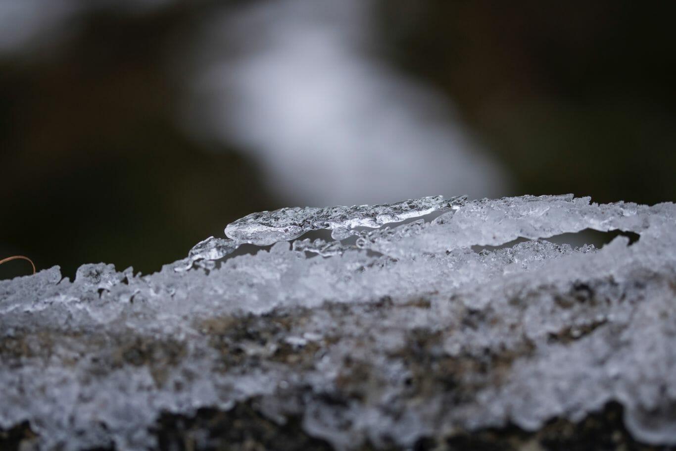 permafrost 2