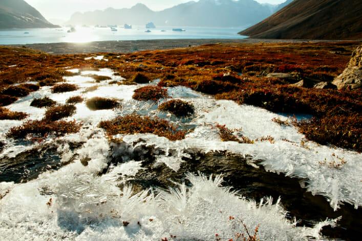 permafrost 3