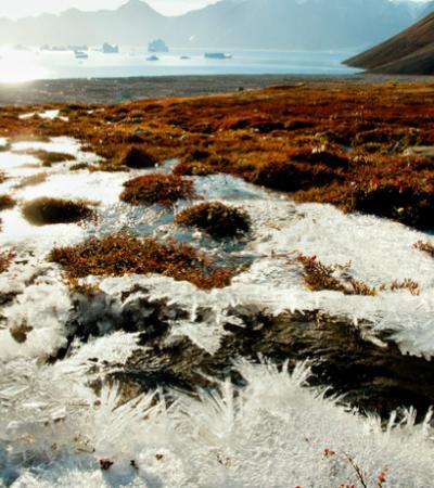 Entenda o que é o permafrost e os riscos do seu derretimento para o planeta