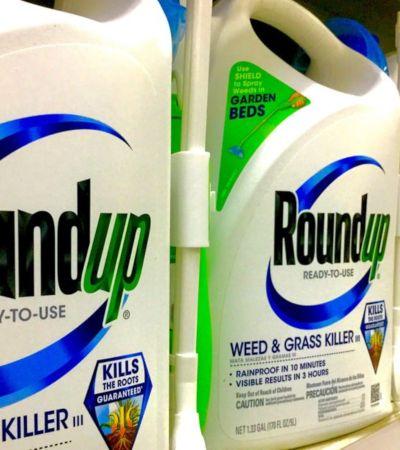 Monsanto é condenada a pagar 2 bilhões a casal com câncer por agrotóxicos