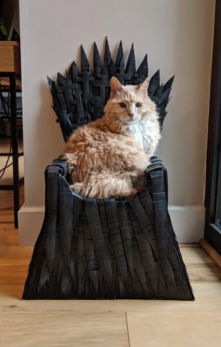 trono got para gatos 4