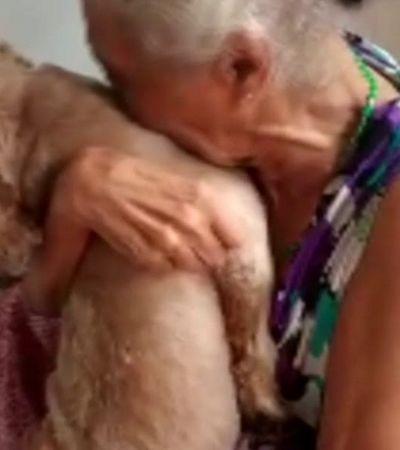 Vovó se emociona ao reencontrar seu cãozinho desaparecido