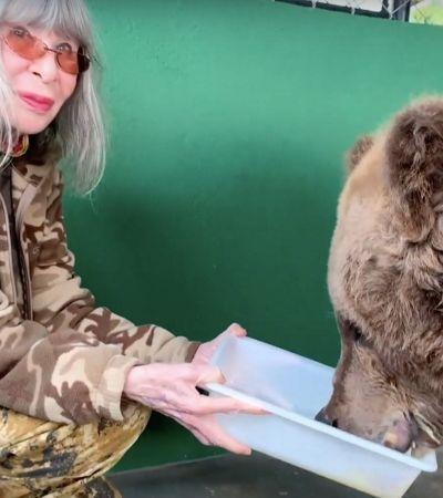 Rita Lee visita e alimenta a ursa maltrada, que a inspirou a escrever livro infantil