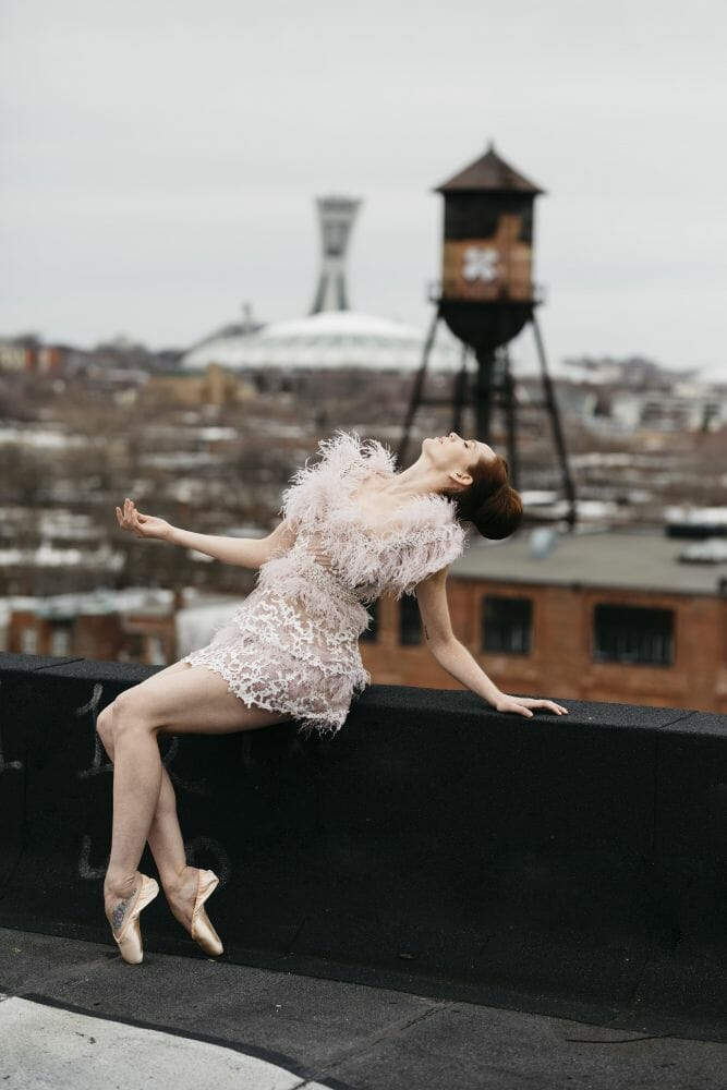 balé e vestidos 12