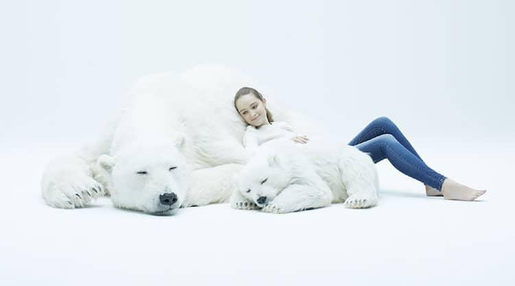esculturas urso polar 1