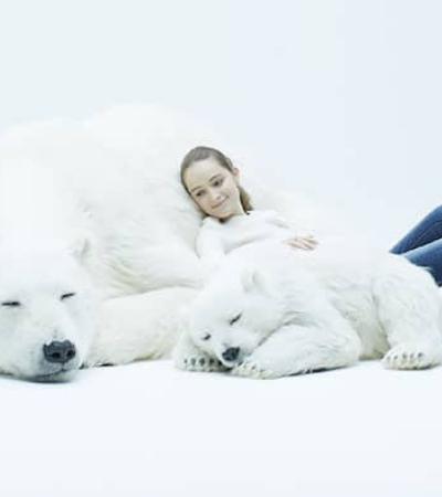 Esculturas de ursos polares cruelty-free promovem reflexão sobre a vida animal
